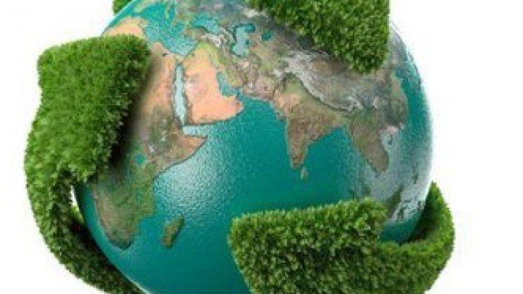 Seguro ambiental tem espaço para crescer em 2015