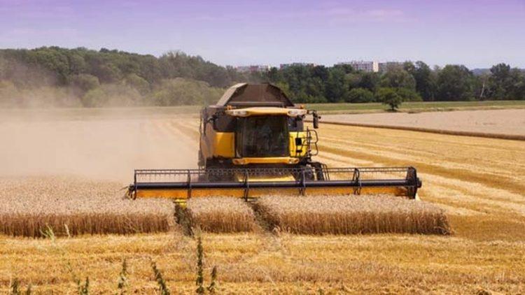 Tecnologia aplicada em maquinário e gestão trazem mais produtividade ao campo