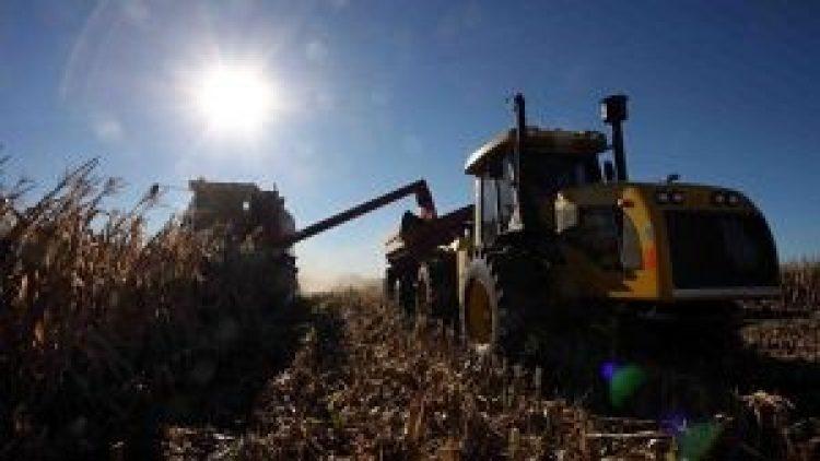 USDA defende seguro colheita nos EUA, com uma 'variedade de ações inovadoras'