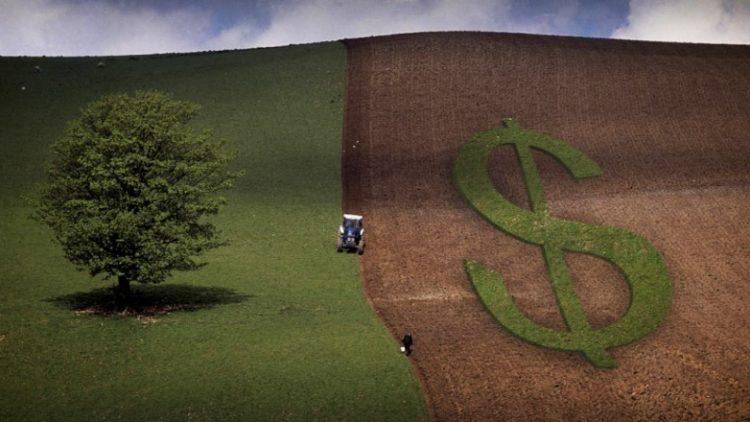 Merkel recebe autorização para atuar com subvenção em seguro rural