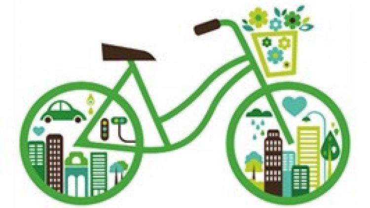 Inovação e Sustentabilidade: A importância do Seguro para Bicicletas