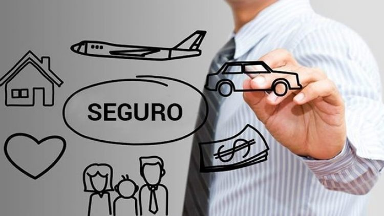 Seguro customizado é tendência no mercado brasileiro