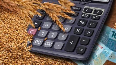 Governo disponibiliza R$ 384 mi em subvenção para contratar seguro rural