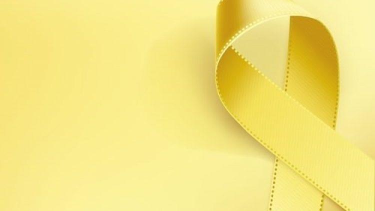 Observatório Nacional de Segurança Viária concede selo de empresa Laço Amarelo à insurtech